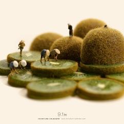miniature-calendar-Paddy-Field